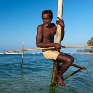 The stilt fishermen at work, Sri Lanka, Asia. Solve global poverty sooner